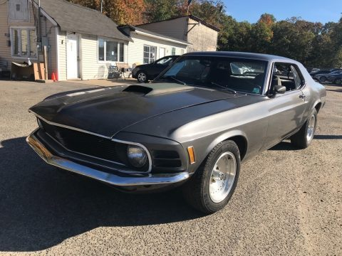 1970 Mustang for Sale