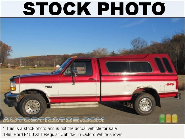 Stock photo for this 1995 Ford F150 XLT Regular Cab 4x4 5.8 Liter OHV 16-Valve V8 4 Speed Automatic