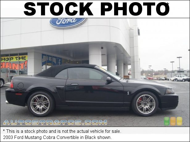 Stock photo for this 2003 Ford Mustang Cobra Convertible 4.6 Liter SVT Supercharged DOHC 32-Valve V8 6 Speed Manual