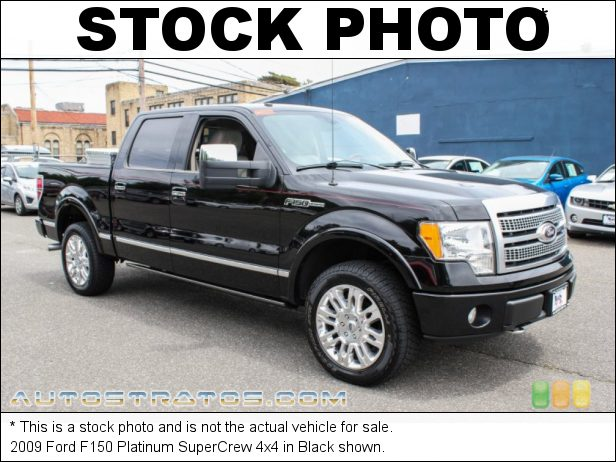 Stock photo for this 2009 Ford F150 SuperCrew 4x4 5.4 Liter SOHC 24-Valve VVT Triton V8 6 Speed Automatic